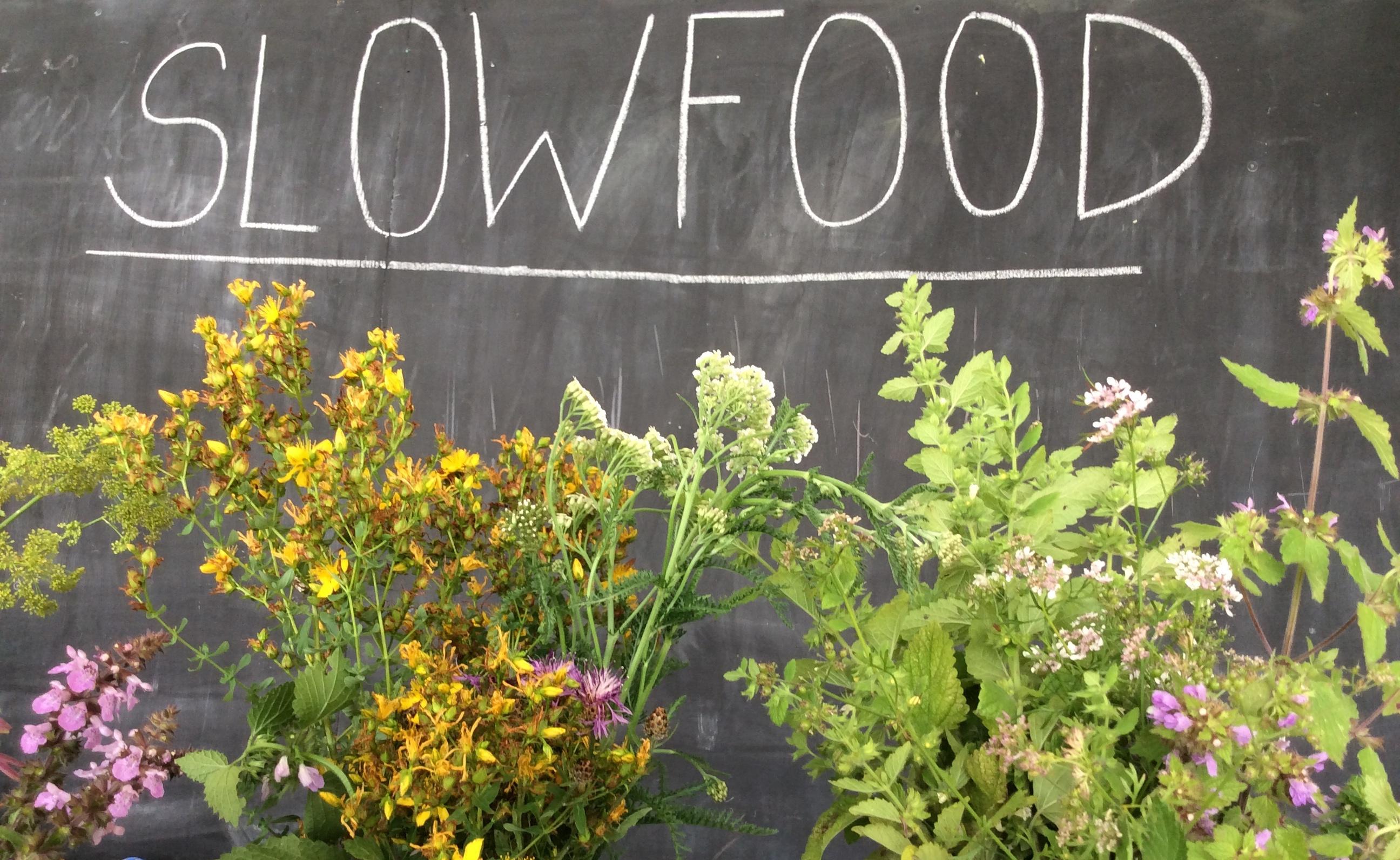 Festival Slow food: Co už jsme zažili a co nás ještě čeká?